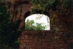 Window in old brick wall