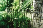 Metal gate with ferns