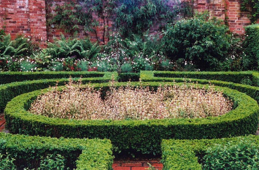 Box Hedging Buxus Sempervirens Garden Design By Sara