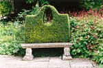Stone bench with yew hedge back