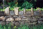Dry stone wall with capping