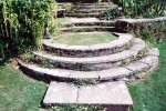 Curved yorkstone steps with Erigeron