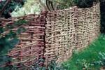Hazel wattle fence