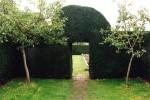 Door in yew hedge