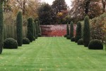 Yew topiary/ Taxus baccata