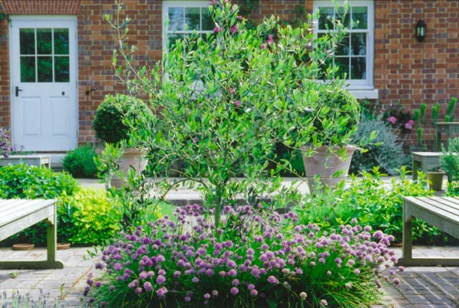 Formal Country Garden, Kent - Garden Design by Sara ...